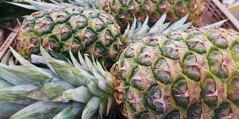 Fruta abacaxi